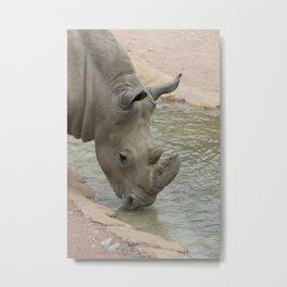 rhino in the jungle Metal Print