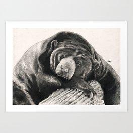 Lullaby... Art Print