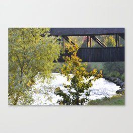 The wooden bridge over the Wutach Canvas Print