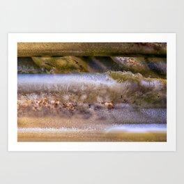 Cloud's on Jupiter Agate Art Print