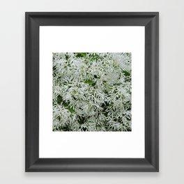 TEXTURES: White on Green Framed Art Print