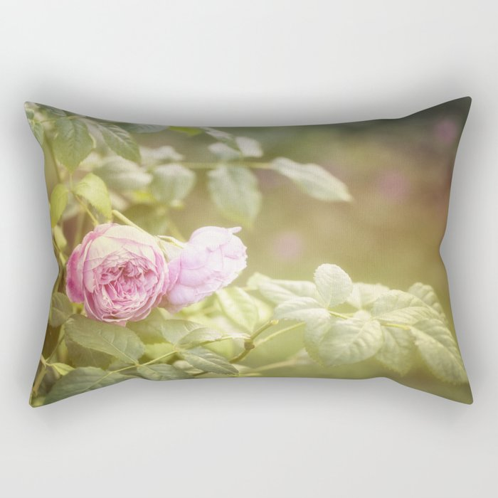 Rose in late sunlight Rectangular Pillow