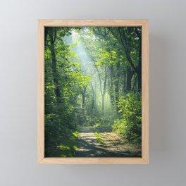 Woodland Glory Framed Mini Art Print