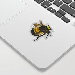 Vintage Scientific Bee Sticker