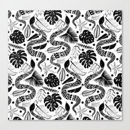 White Snakes Canvas Print