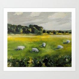 Irish Sheep Art Print