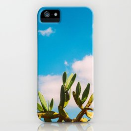 Beautiful Vintage Photo Green Cactus With Blue Sky White Cloud iPhone Case