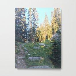 Wild Basin Metal Print