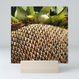 Sunflower Seeds Mini Art Print