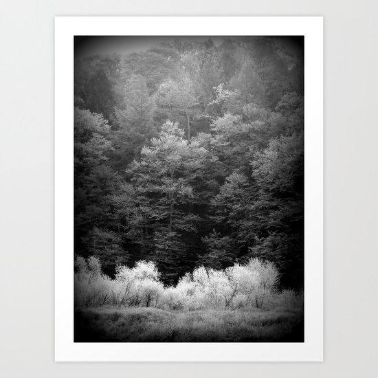 The Forest Keeps Secrets Art Print