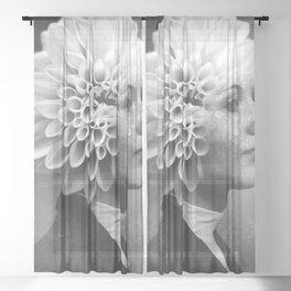 Dear Imagination Sheer Curtain