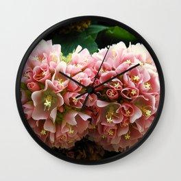 Pink Snowball Bush Flowers in San Diego Wall Clock