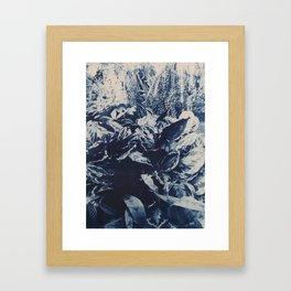 Prayer Plant I Framed Art Print