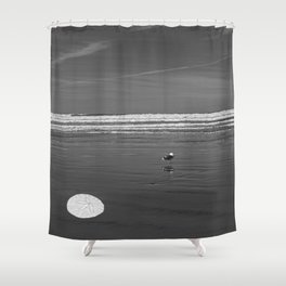Pacific Ocean Sand Dollar Shower Curtain