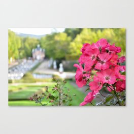 Flowers in the palace Canvas Print