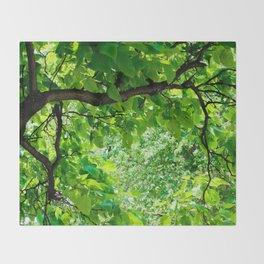 Peek into the Summer Trees Throw Blanket