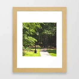 Wellesley Lamp Post Framed Art Print