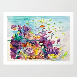 Biscayne National Park Art Print