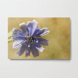 wild flowers #121 Metal Print
