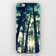 Towering Pines iPhone & iPod Skin