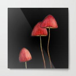 Champignons rouges Metal Print