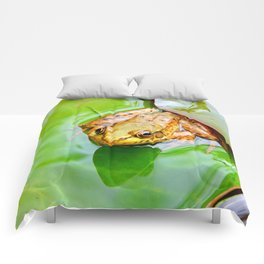 Frog on a Lily-pad Comforters