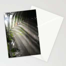 Photosynthesis Stationery Cards