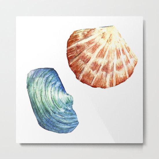 Colorful Shells Metal Print