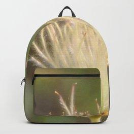 Apache Plume Backpack