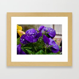 Deep Purple Framed Art Print