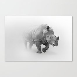 Wild Rhino in Fogs Black and White Photography Art Canvas Print
