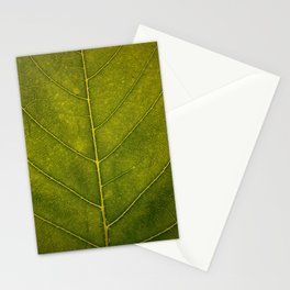 Leaf Vein - HD Natue Stationery Cards