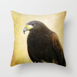 A Harris Hawk Throw Pillow