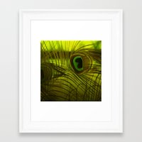 peacock feather Framed Art Prints featuring Peacock Feather by TaLins