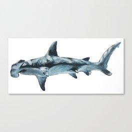 Great Hammerhead Shark Canvas Print