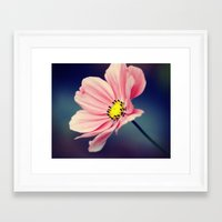 cosmos Framed Art Prints featuring Cosmos by Lawson Images