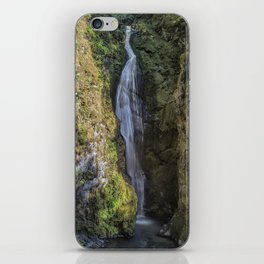 Pinard Falls Squared iPhone Skin