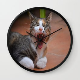Liza the cat with a big smile Wall Clock