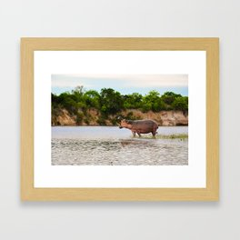 The Call (Of The Wild) Framed Art Print