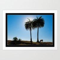 Sun Peeping Through Palm Leaves. Art Print
