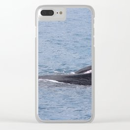 Mother and Calf in Hervey Bay Clear iPhone Case