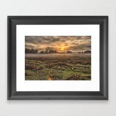 Pumpkins At Dusk Framed Art Print