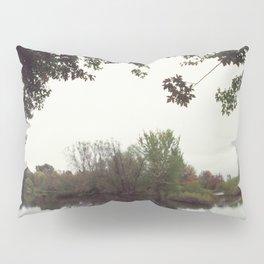 269//365 Pillow Sham