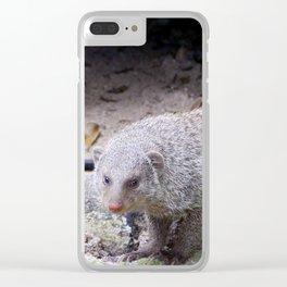 Glaring Mongoose Clear iPhone Case