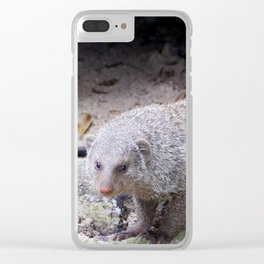 Glaring Mongoose Clear iPhone Case