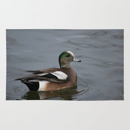 American Wigeon - Male Duck Rug