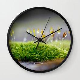 Mossy Moss Wall Clock