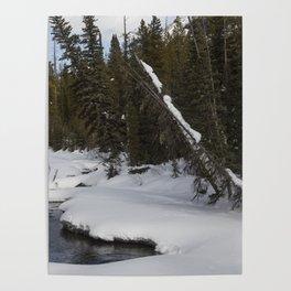 Carol M Highsmith - Snow Covered Landscape Poster