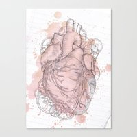 anatomical heart Canvas Prints featuring Anatomical Heart by Sumi Senthi