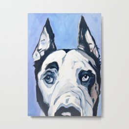 Great Dane in Purple Metal Print